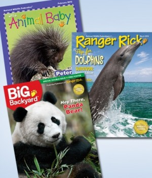 ranger rick big backyard and animal baby magazines