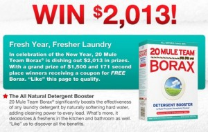 Borax Sweepstakes