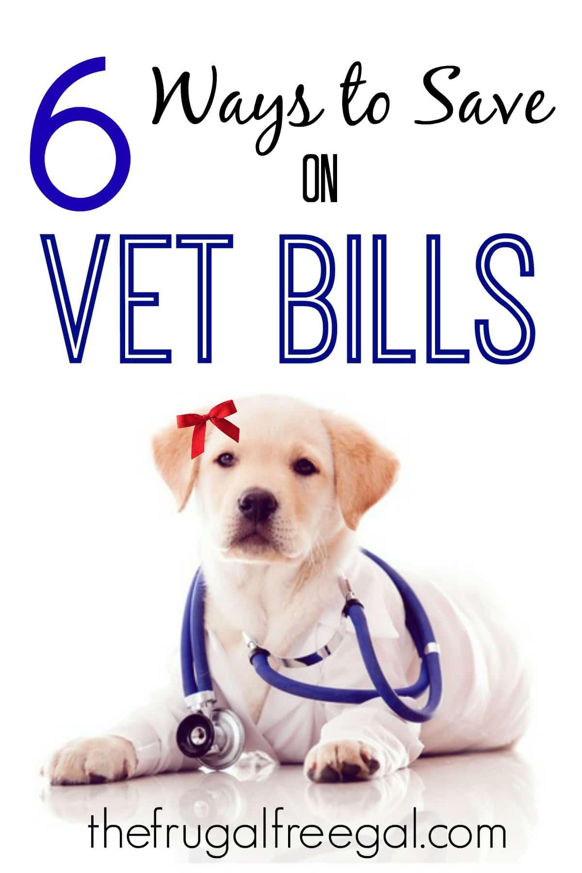 ways to save on vet bills
