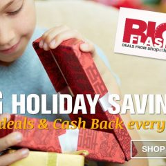 Big Holiday Savings