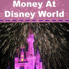 How to Save Money at Disney World 2