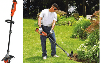 Amazon Deal of the Day: BLACK+DECKER Trimmer & Edger
