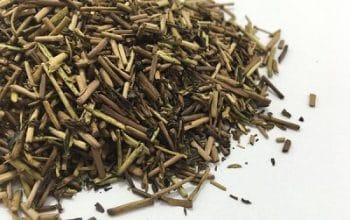 FREE Yunomi Loose Tea Sample