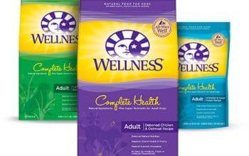 PetSmart: FREE Bag of Dog or Cat Food (various brands)