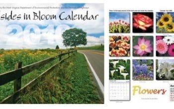FREE 2019 Roadsides in Bloom Calendar!