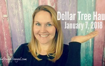 YouTube Video: Dollar Tree Haul 1/8