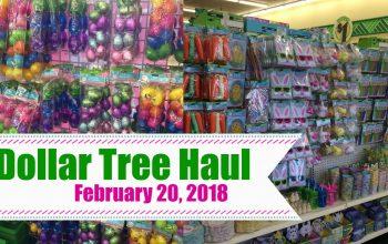 YouTube Video: Dollar Tree Haul 2/20