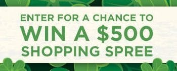 Enter to Win a $500 ShoeMall Gift Card (ends 3/17)
