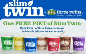 FREE Pint of Slim Twin Ice Cream (printable coupon)