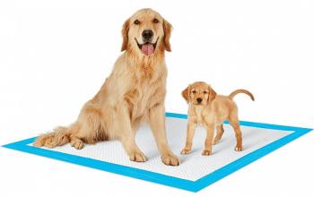 FREE PetsWorld Training Pads Sample