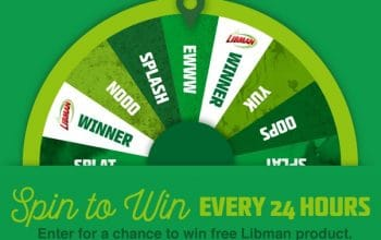 """The Libman """"Embrace Life's Messes"""" Giveaway (Ends 8/31)"""