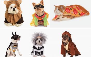 Rubies Pet Costumes as LOW as $10!