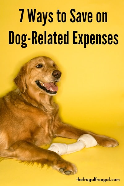 Ways to Save on Dog Expenses