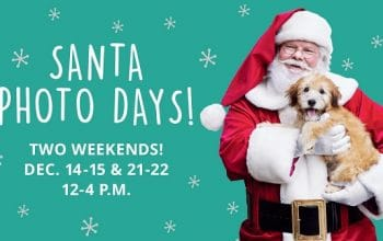 PetSmart: FREE Photo Of Your Pet With Santa