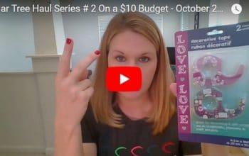 YouTube Video: Dollar Tree Haul #2 on a $10 Budget