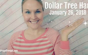 YouTube Video: Dollar Tree Haul 1/26