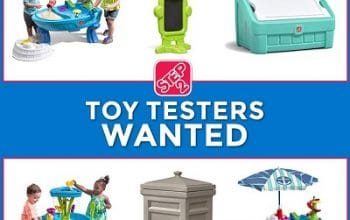 Step2 is Looking for Toy Testers (Ends 8/26)
