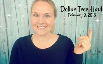 YouTube Video: Dollar Tree Haul 2/9