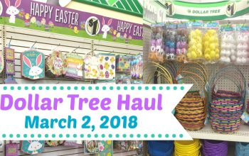 YouTube Video: Dollar Tree Haul 3/2