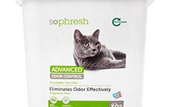 FREE 30lb Bucket of So Phresh Cat Litter at Petco
