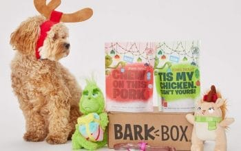 Amazon: Get up to 45% off a Limited Edition Grinch BarkBox