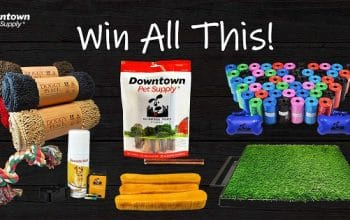 Downtown Pet Supply's Pawtastic Giveaway (ends 2/4)