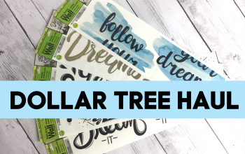 YouTube Video: Dollar Tree Haul 2/20/19