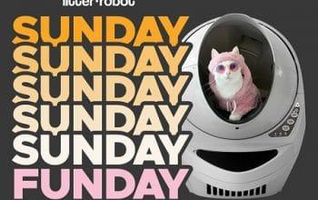 Enter to Win a Litter Robot (ends 3/30)
