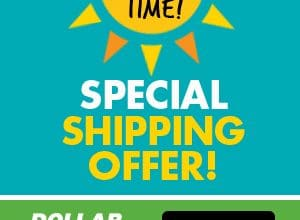 $4.95 Flat Rate Shipping at Dollar Tree (Ends 4/11)