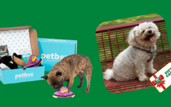 Enter to Win a PetBox + Gift Card (ends 5/1)