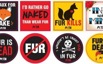 FREE PETA Fur is Dead Sticker Pack