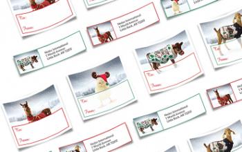 FREE Heifer International Holiday Address Labels