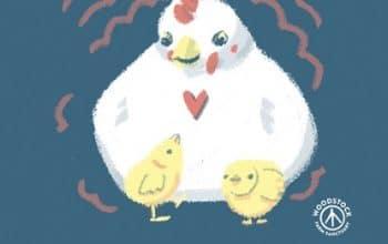 FREE Consider the Egg Sticker